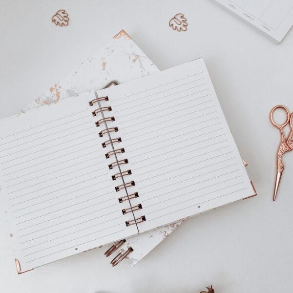 dnevnik planer